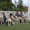2012.10.14.生れ エマの仔犬たちの集い at ピノッキオ