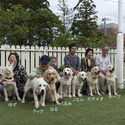 昨年生まれたエマの仔犬たちがピノッキオに集いました。